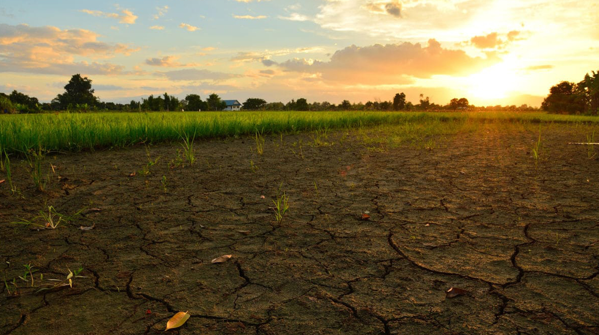 img_banner_climate_change